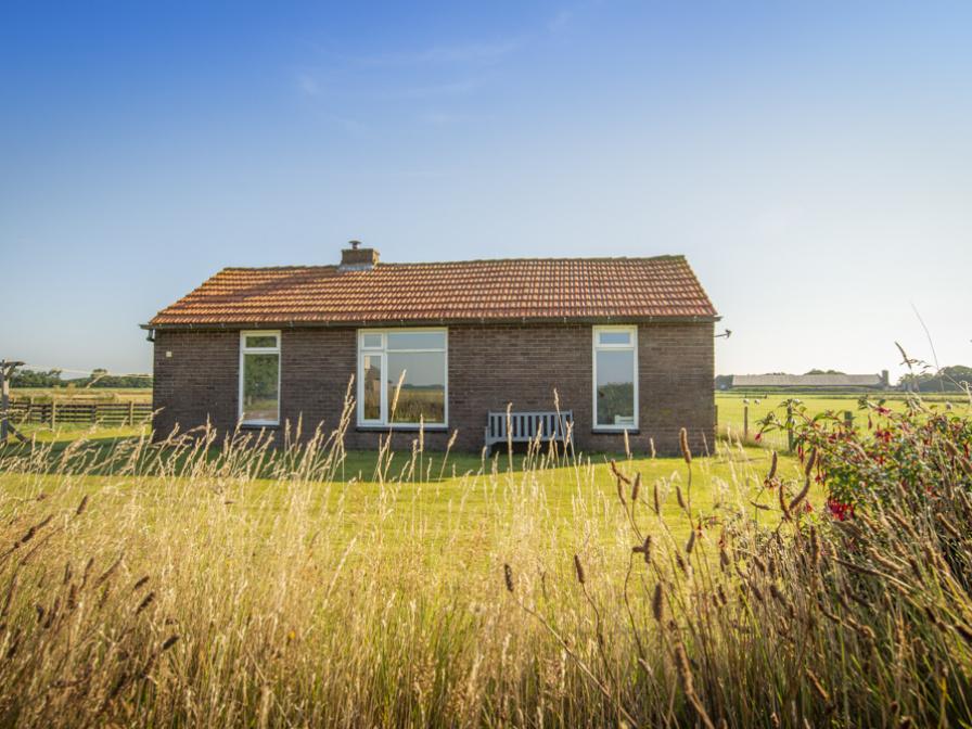Huisje Schiller - 4883
